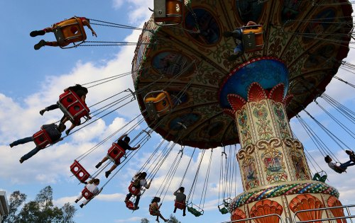 Image Gallery: Animals, food, carnival, music, and more highlight