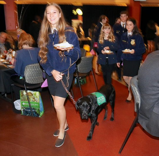 Members of the Lemoore High School Future Farmers of America Guide Dog Program were honored as the Organization of the Year.