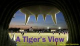 A view from the Tigers' mouth