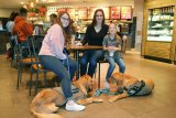 Lemoore's Vicki Jones with daughters Breana (left) and Kandace (right). Golden retrievers Lazer and Duke take it easy beneath a table at Starbucks.