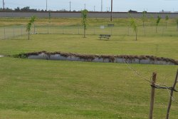 Kings Lions park will be partially closed to repair an underground drainage pipe.