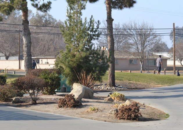The Lemoore Golf Course has been the subject of much discussion over the past year.